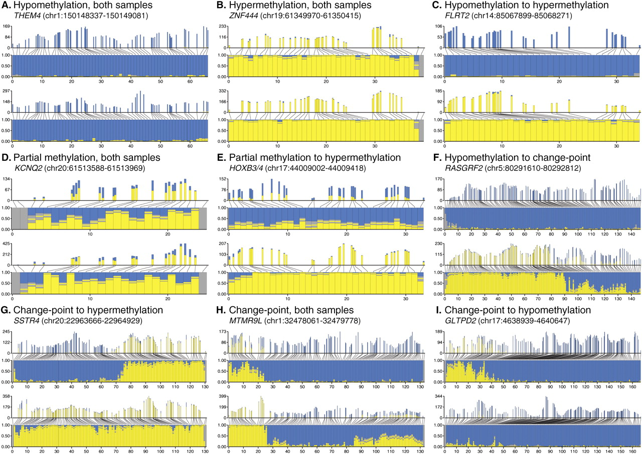 High definition profiling of mammalian DNA methylation by